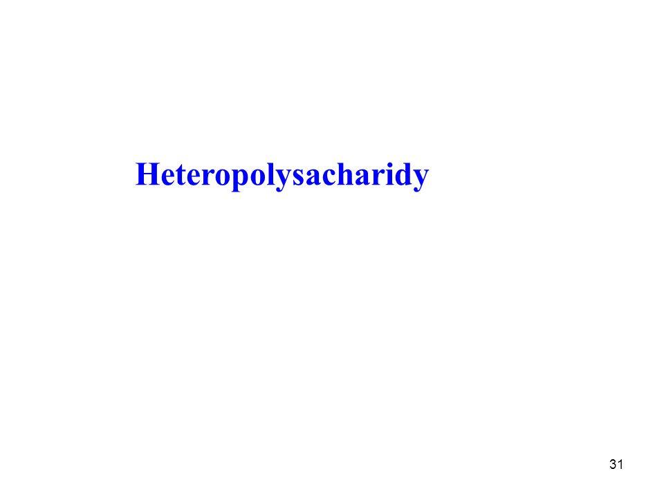 31 Heteropolysacharidy