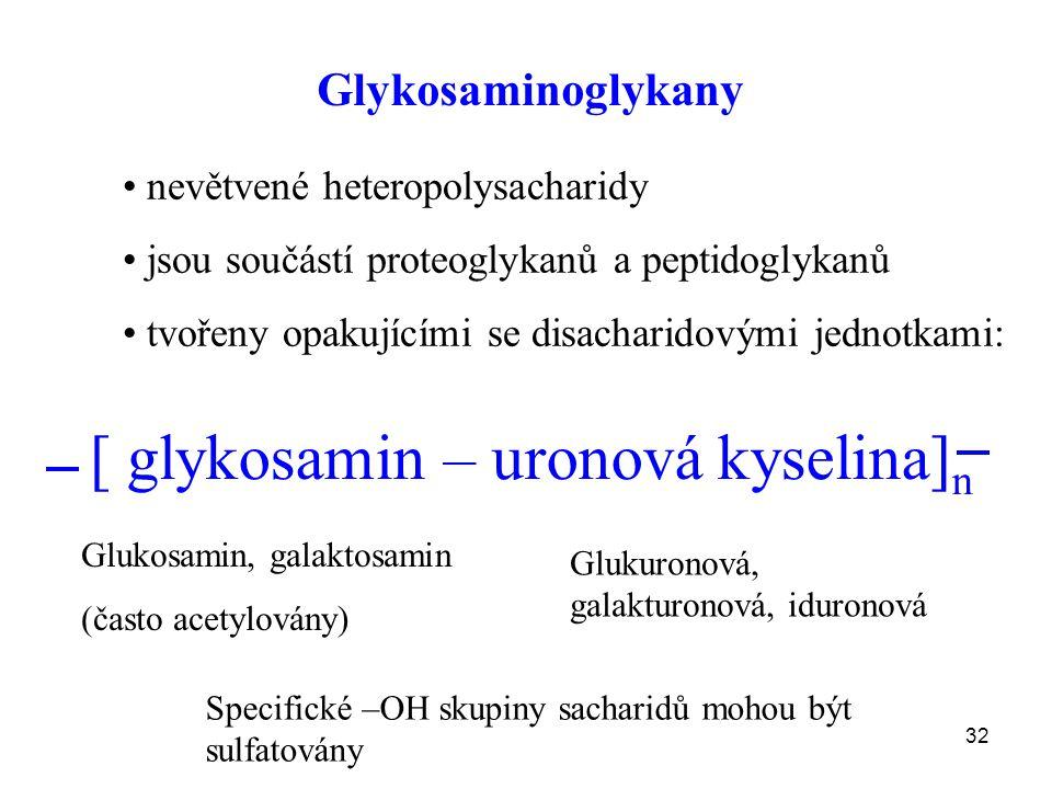 32 Glykosaminoglykany nevětvené heteropolysacharidy jsou součástí proteoglykanů a peptidoglykanů tvořeny opakujícími se disacharidovými jednotkami: [ glykosamin – uronová kyselina] n Glukosamin, galaktosamin (často acetylovány) Glukuronová, galakturonová, iduronová Specifické –OH skupiny sacharidů mohou být sulfatovány