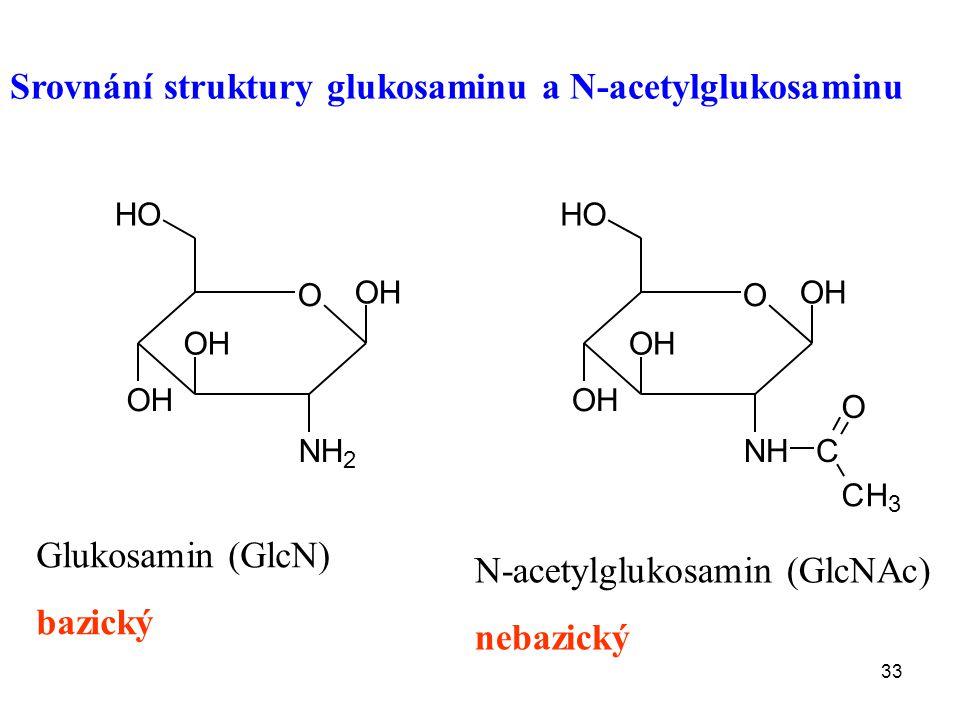 33 Glukosamin (GlcN) bazický N-acetylglukosamin (GlcNAc) nebazický Srovnání struktury glukosaminu a N-acetylglukosaminu O OH NH 2 OH OH HO O OH NH OH OH HO C CH 3 O