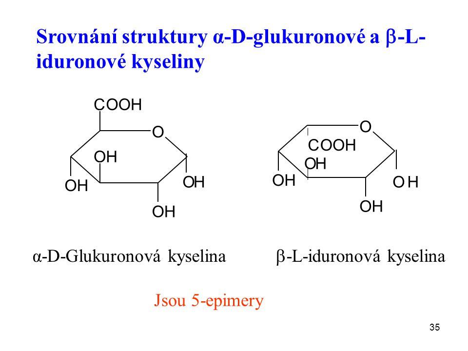 35 α-D-Glukuronová kyselina O OH OH OH OH COOH O OH OH OH OH COOH  -L-iduronová kyselina Srovnání struktury α-D-glukuronové a  -L- iduronové kyseliny Jsou 5-epimery