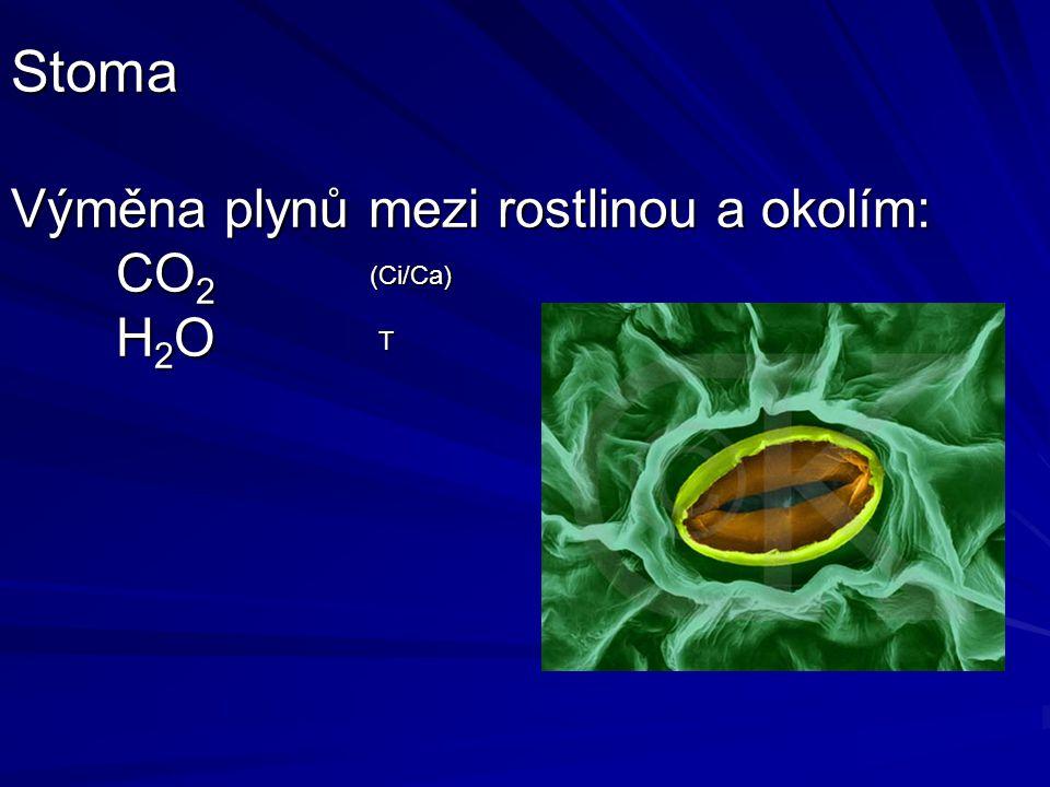 Stoma Výměna plynů mezi rostlinou a okolím: CO 2 H 2 O (Ci/Ca) T