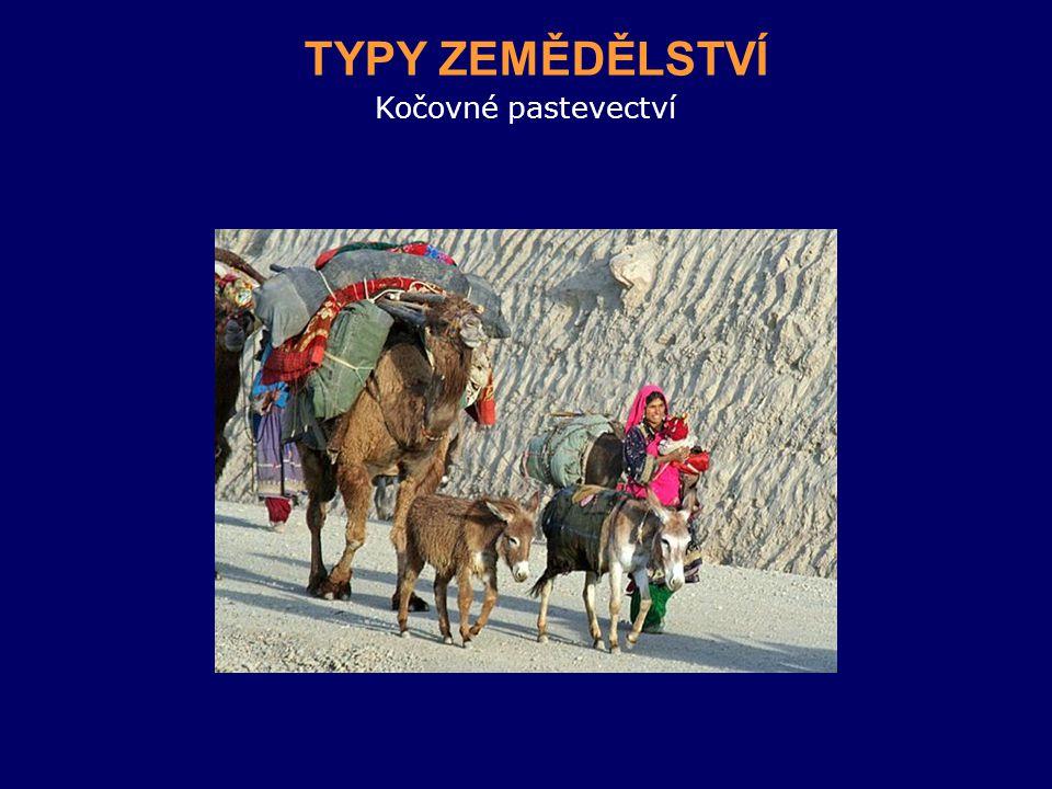 Kočovné pastevectví TYPY ZEMĚDĚLSTVÍ
