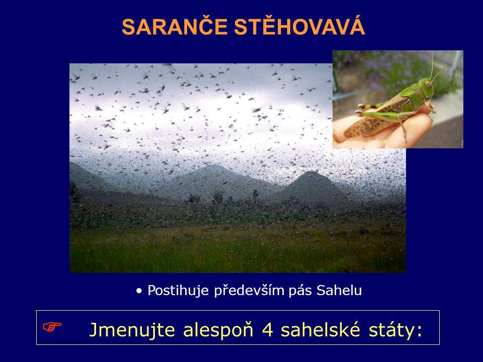 SARANČE STĚHOVAVÁ Postihuje především pás Sahelu  Jmenujte alespoň 4 sahelské státy:
