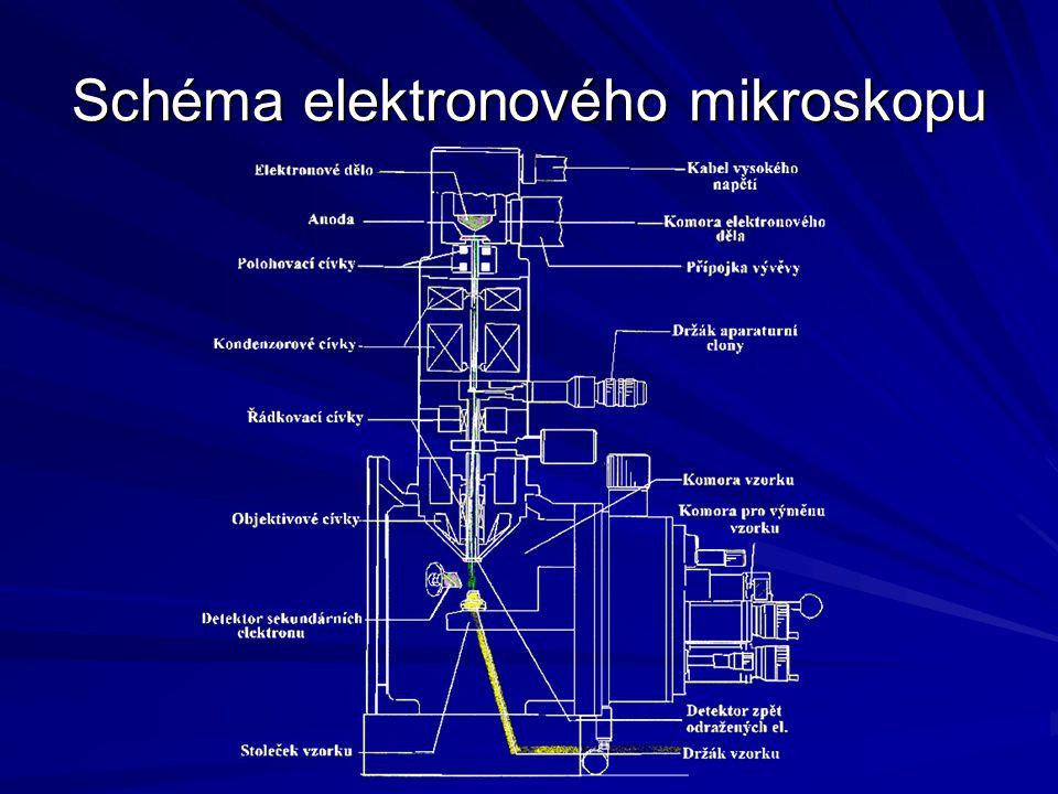 Srovnání optického a elektronového mikroskop