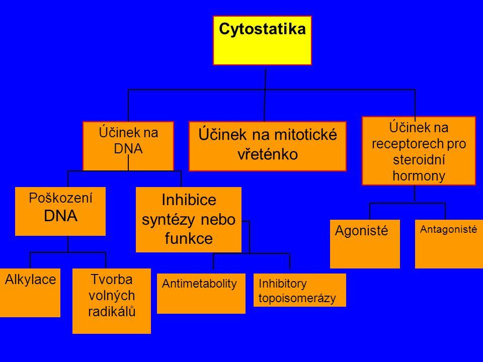 Cytostatika Účinek na mitotické vřeténko Účinek na receptorech pro steroidní hormony Účinek na DNA Poškození DNA Inhibice syntézy nebo funkce Alkylace