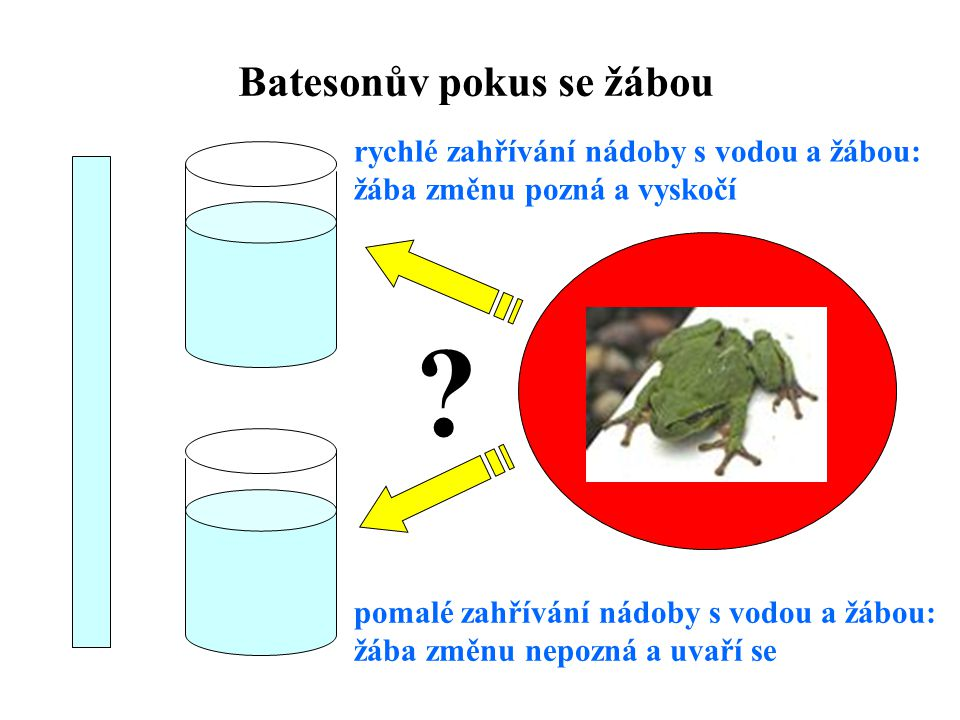 Batesonův pokus se žábou .