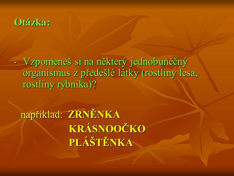 Otázka: Vzpomeneš si na některý jednobuněčný organismus z předešlé látky (rostliny lesa, rostliny rybníka)? Vzpomeneš si na některý jednobuněčný organ