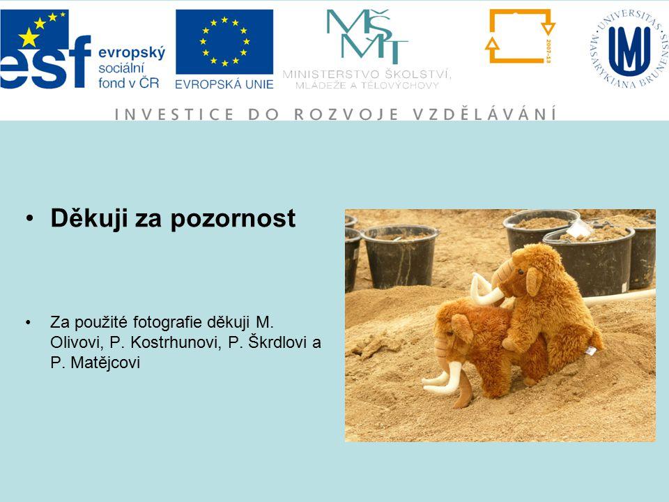 Děkuji za pozornost Za použité fotografie děkuji M. Olivovi, P. Kostrhunovi, P. Škrdlovi a P. Matějcovi