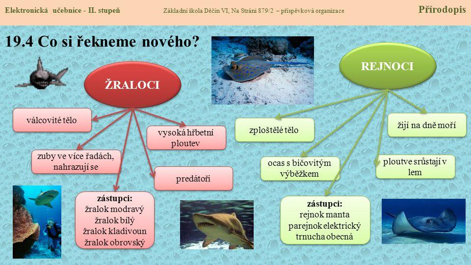 19.5 Procvičení a příklady Elektronická učebnice - II.