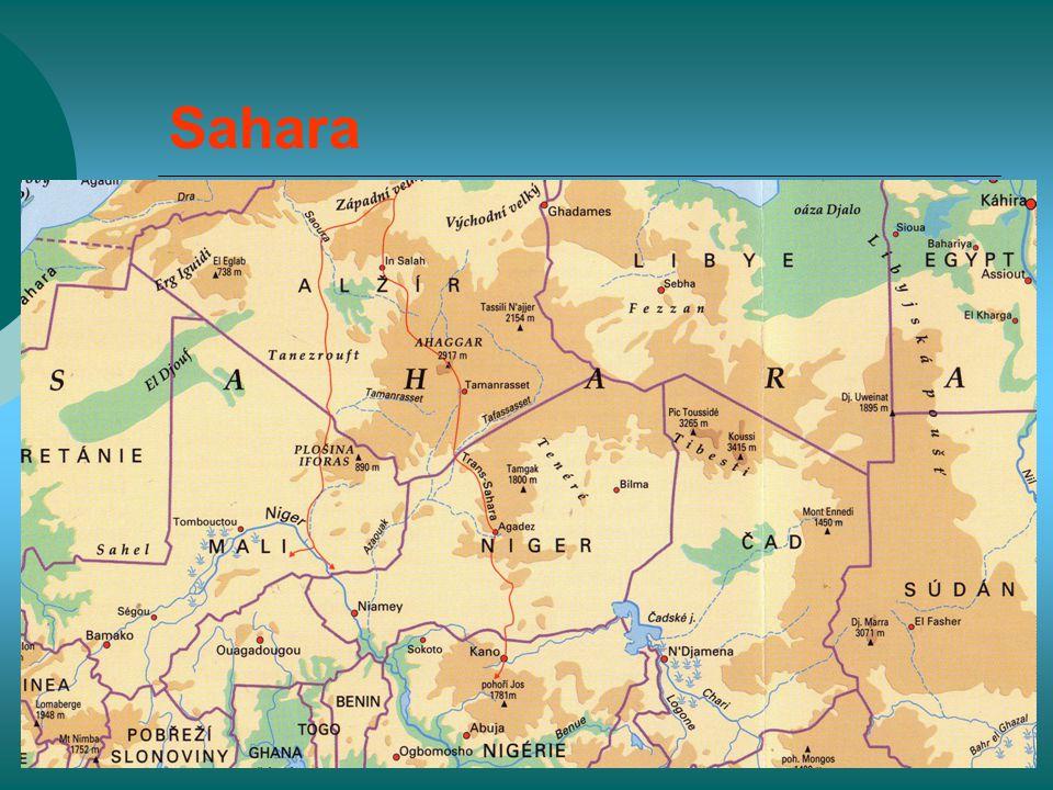 Sahara  Rozsáhlé roviny,vodorovně uložené sedimenty,kamenité zvětraliny, pánve  nejrozsáhlejší poušť světa  Hamady – štěrkové pouště  Ergy – písečné pouště, zabírají jen cca 20% rozlohy  Seriry – oblázkové pouště