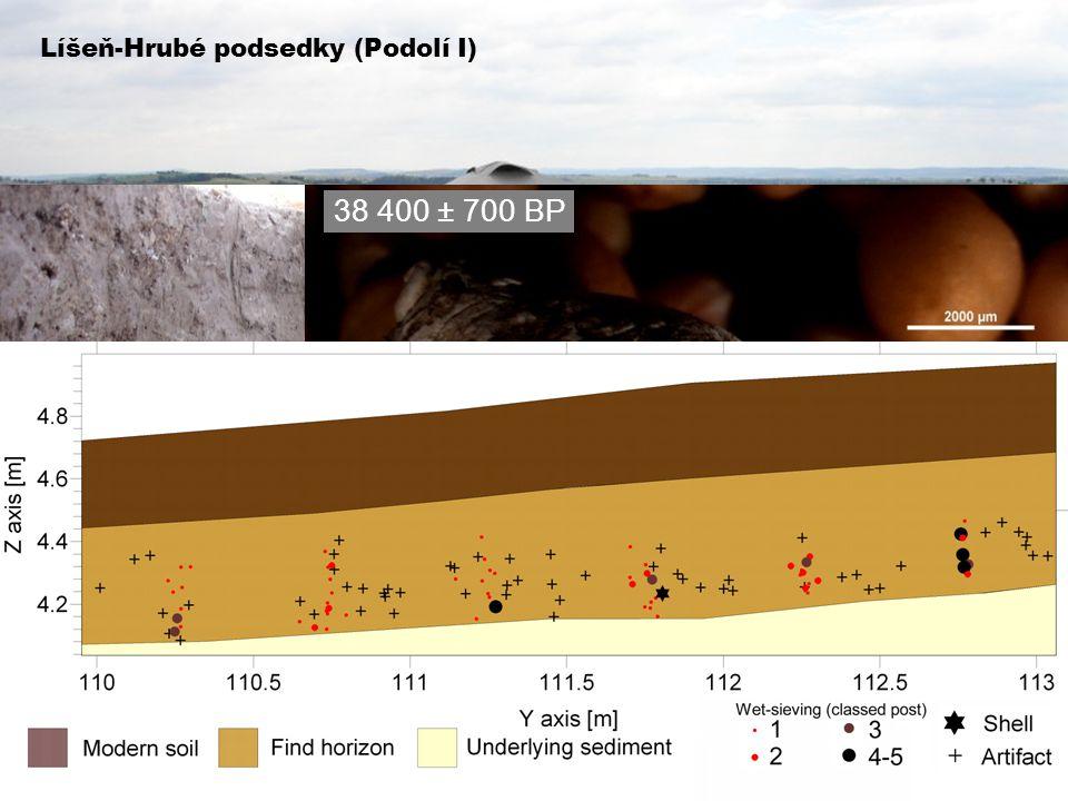 Líšeň-Hrubé podsedky (Podolí I) 38 400 ± 700 BP