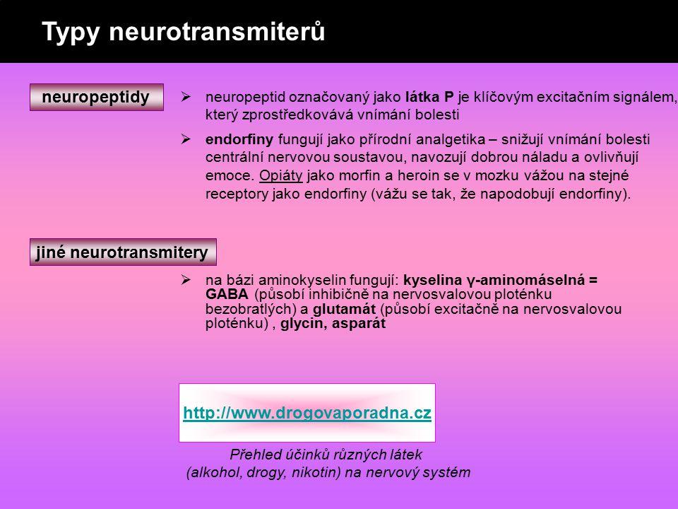 neuropeptidy  neuropeptid označovaný jako látka P je klíčovým excitačním signálem, který zprostředkovává vnímání bolesti  endorfiny fungují jako pří