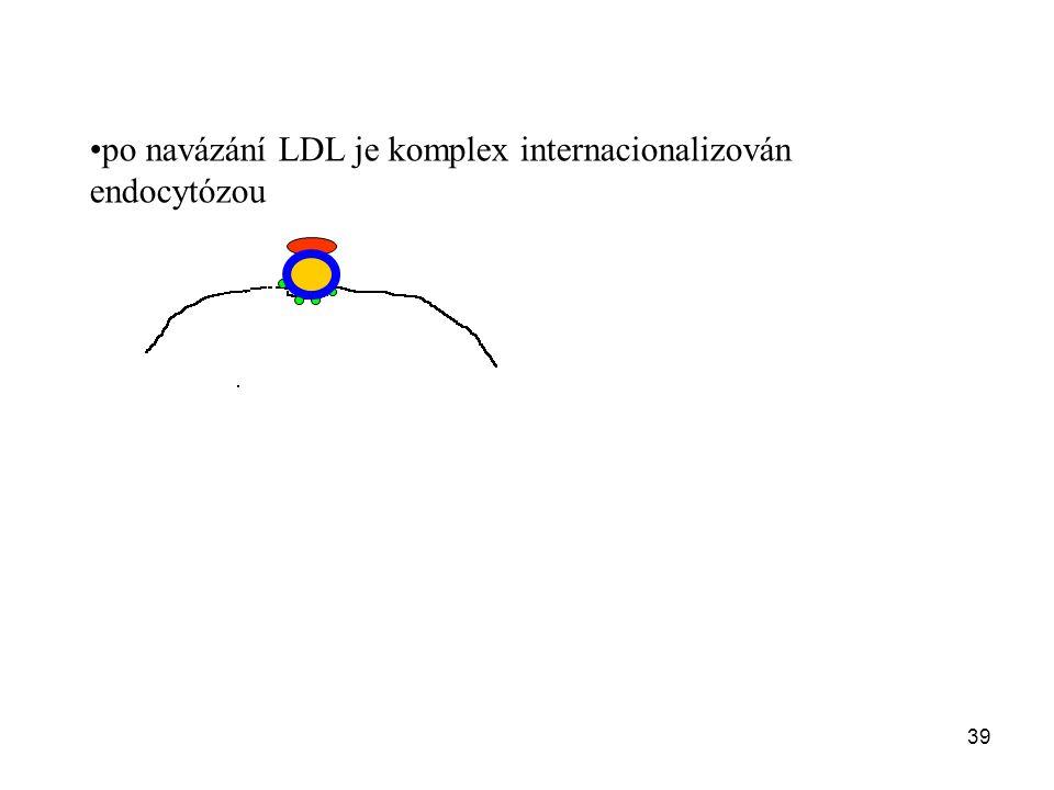 39 po navázání LDL je komplex internacionalizován endocytózou