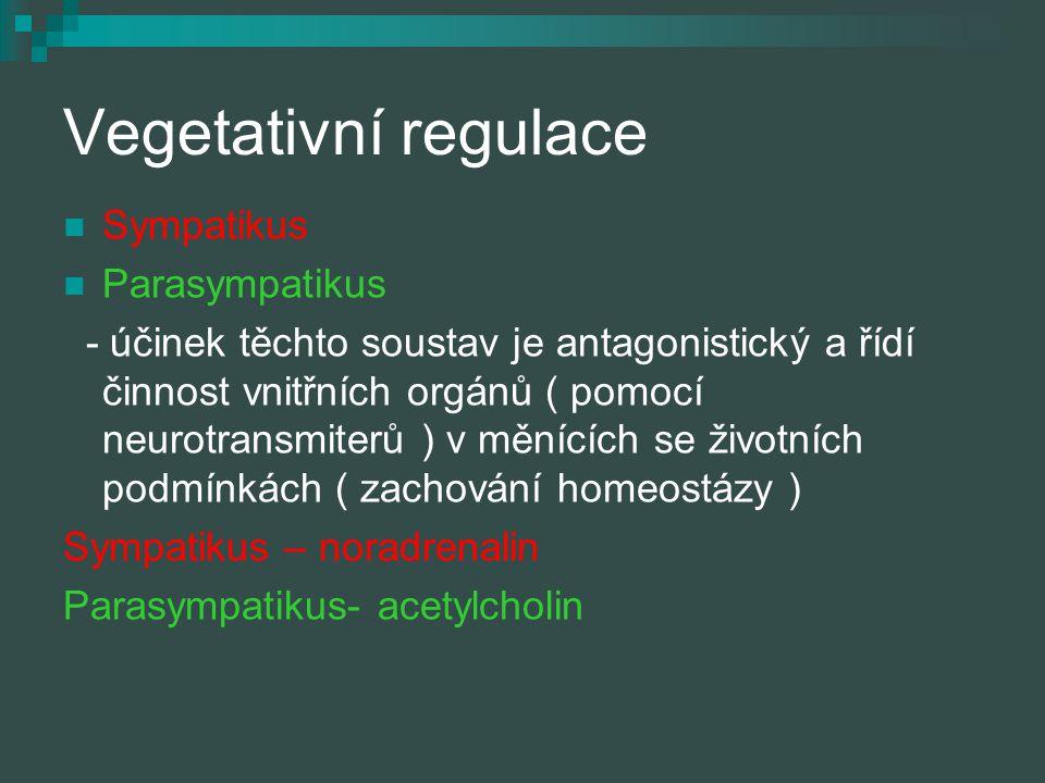 Vegetativní regulace Sympatikus Parasympatikus - účinek těchto soustav je antagonistický a řídí činnost vnitřních orgánů ( pomocí neurotransmiterů ) v
