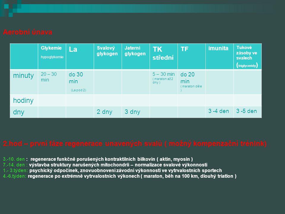 Aerobní únava 2.hod – první fáze regenerace unavených svalů ( možný kompenzační trénink) 3.-10. den : regenerace funkčně porušených kontraktilních bíl