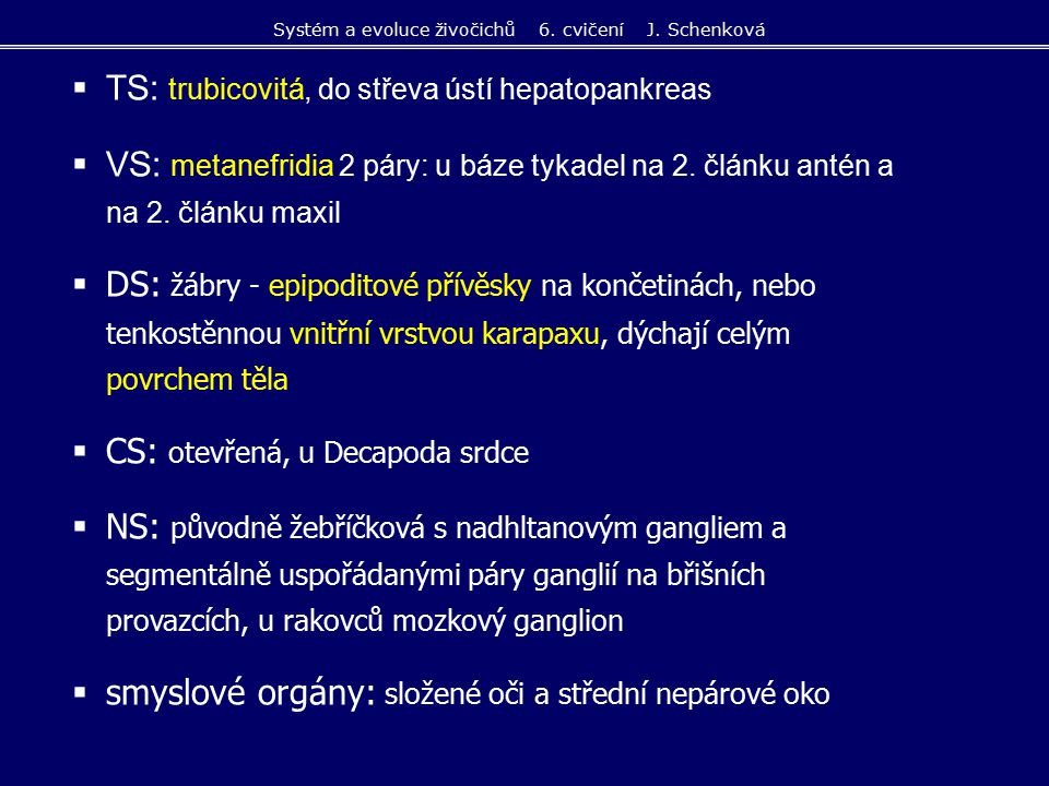  TS: trubicovitá, do střeva ústí hepatopankreas  VS: metanefridia 2 páry: u báze tykadel na 2. článku antén a na 2. článku maxil  DS: žábry - epipo