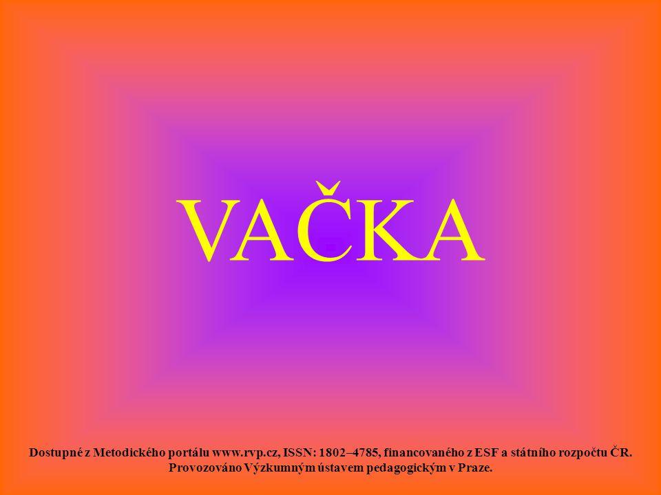 VAČKA Dostupné z Metodického portálu www.rvp.cz, ISSN: 1802–4785, financovaného z ESF a státního rozpočtu ČR. Provozováno Výzkumným ústavem pedagogick