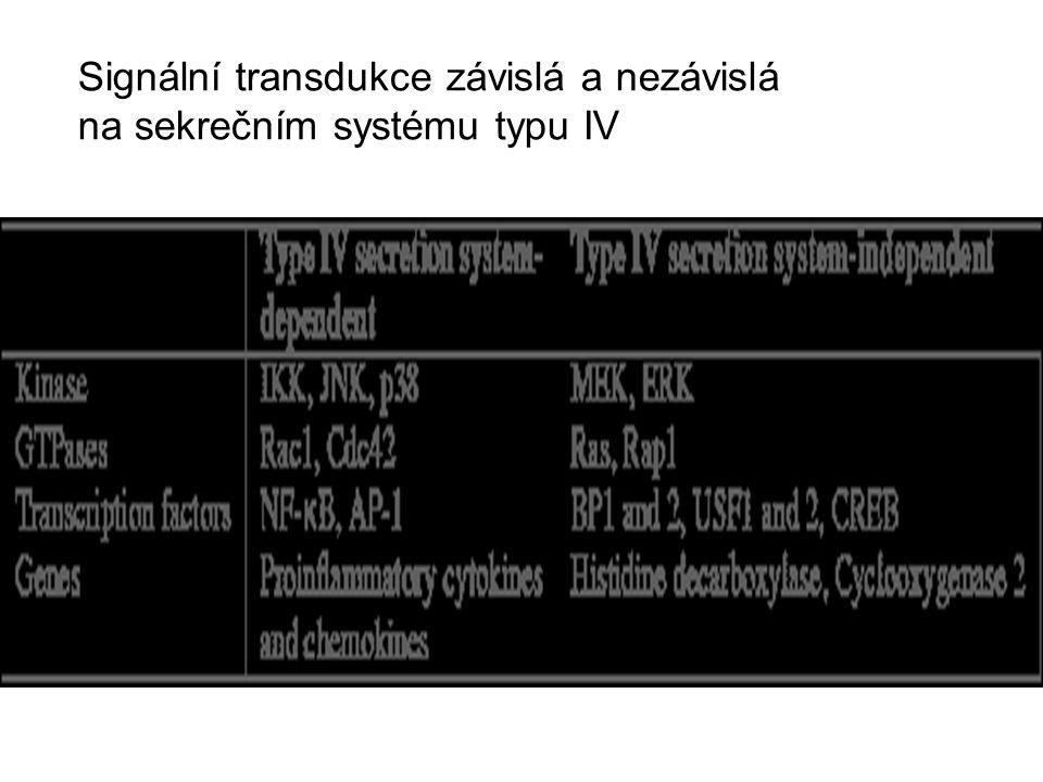Signální transdukce závislá a nezávislá na sekrečním systému typu IV