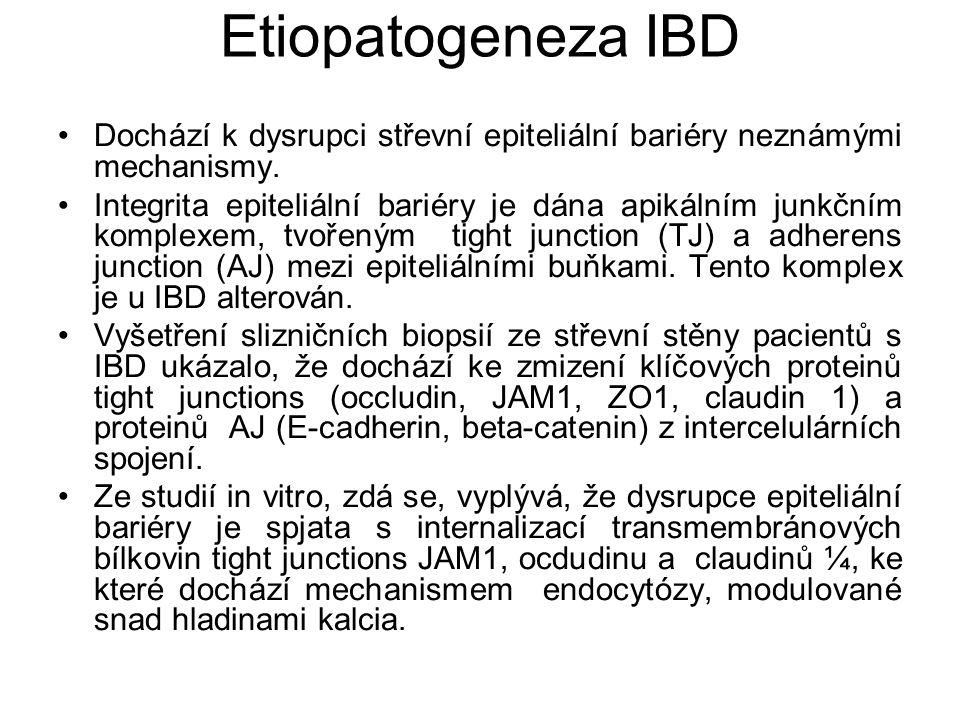 Etiopatogeneza IBD Dochází k dysrupci střevní epiteliální bariéry neznámými mechanismy. Integrita epiteliální bariéry je dána apikálním junkčním kompl