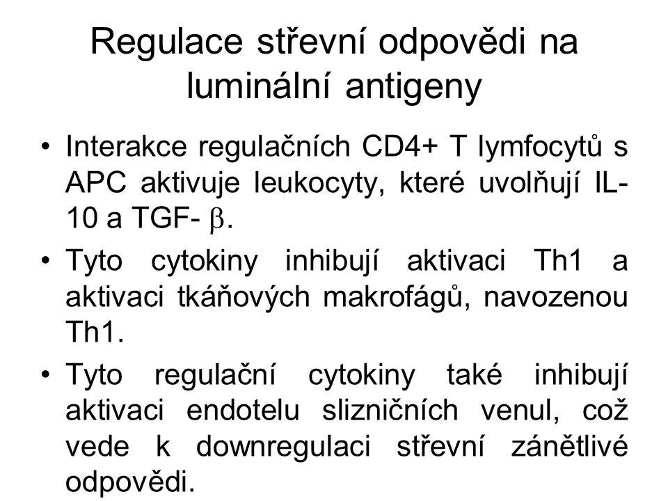 Regulace střevní odpovědi na luminální antigeny Interakce regulačních CD4+ T lymfocytů s APC aktivuje leukocyty, které uvolňují IL- 10 a TGF- . Tyto