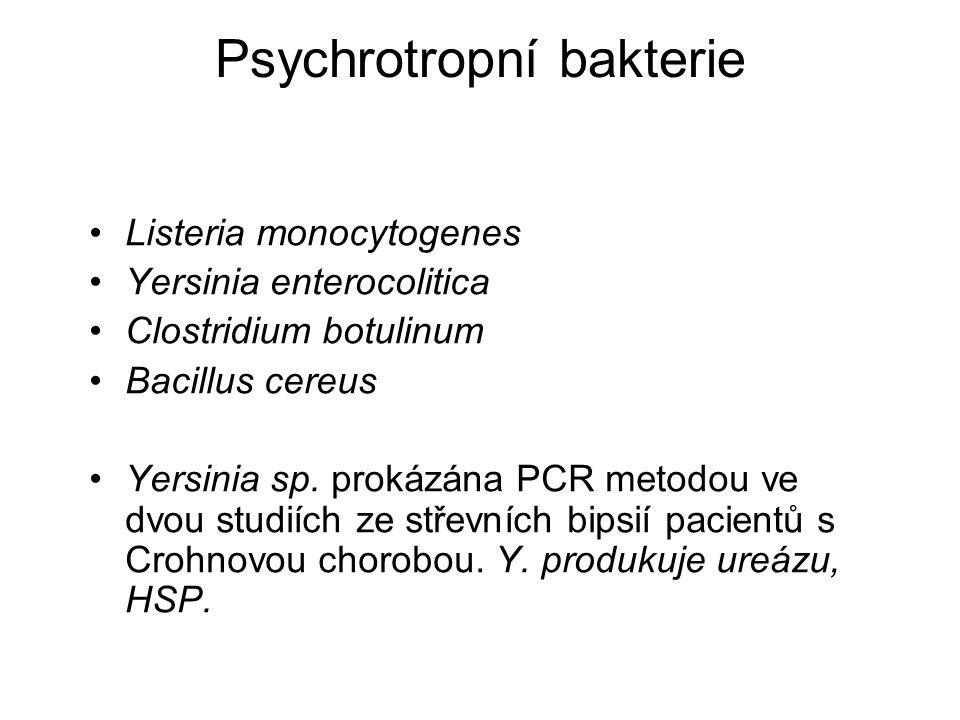 Psychrotropní bakterie Listeria monocytogenes Yersinia enterocolitica Clostridium botulinum Bacillus cereus Yersinia sp. prokázána PCR metodou ve dvou