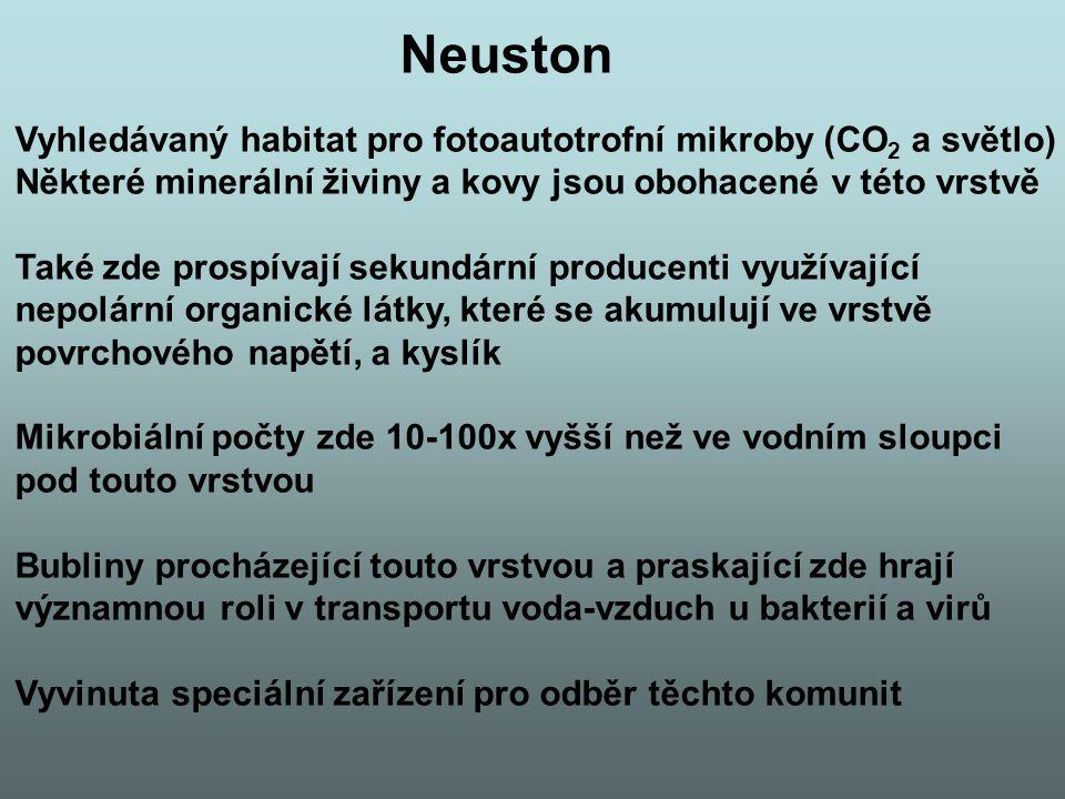 Neuston Vyhledávaný habitat pro fotoautotrofní mikroby (CO 2 a světlo) Některé minerální živiny a kovy jsou obohacené v této vrstvě Také zde prospívají sekundární producenti využívající nepolární organické látky, které se akumulují ve vrstvě povrchového napětí, a kyslík Mikrobiální počty zde 10-100x vyšší než ve vodním sloupci pod touto vrstvou Bubliny procházející touto vrstvou a praskající zde hrají významnou roli v transportu voda-vzduch u bakterií a virů Vyvinuta speciální zařízení pro odběr těchto komunit