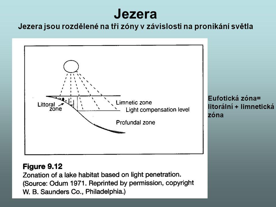 Jezera Jezera jsou rozdělené na tři zóny v závislosti na pronikání světla Eufotická zóna= litorální + limnetická zóna