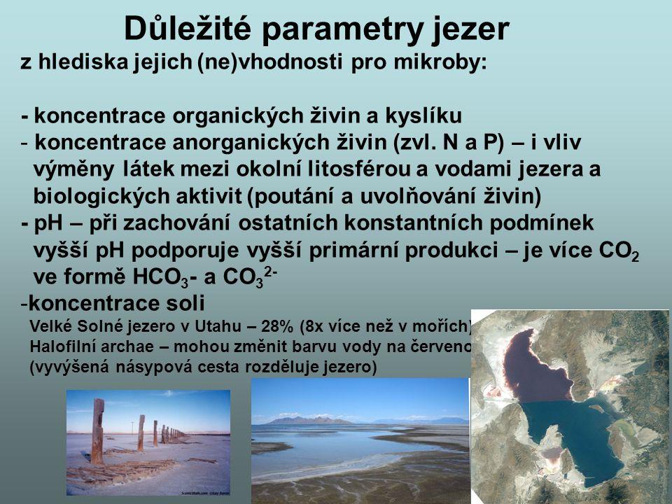 Důležité parametry jezer z hlediska jejich (ne)vhodnosti pro mikroby: - koncentrace organických živin a kyslíku - koncentrace anorganických živin (zvl.