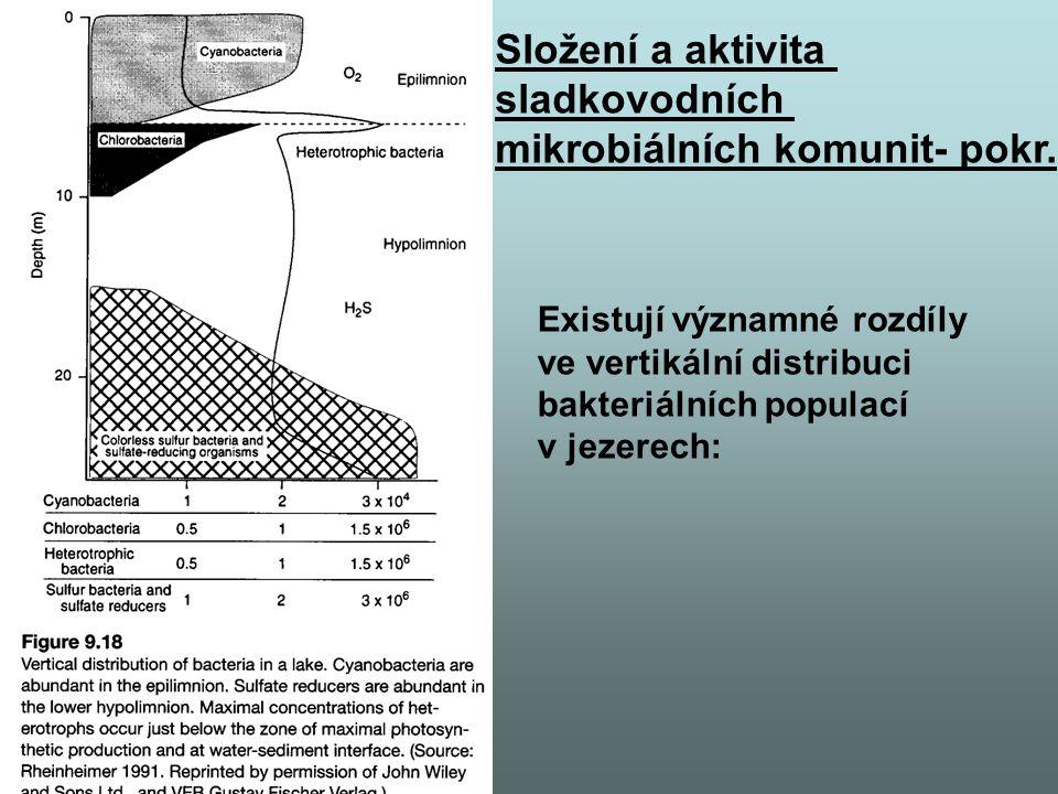 Existují významné rozdíly ve vertikální distribuci bakteriálních populací v jezerech: Složení a aktivita sladkovodních mikrobiálních komunit- pokr.