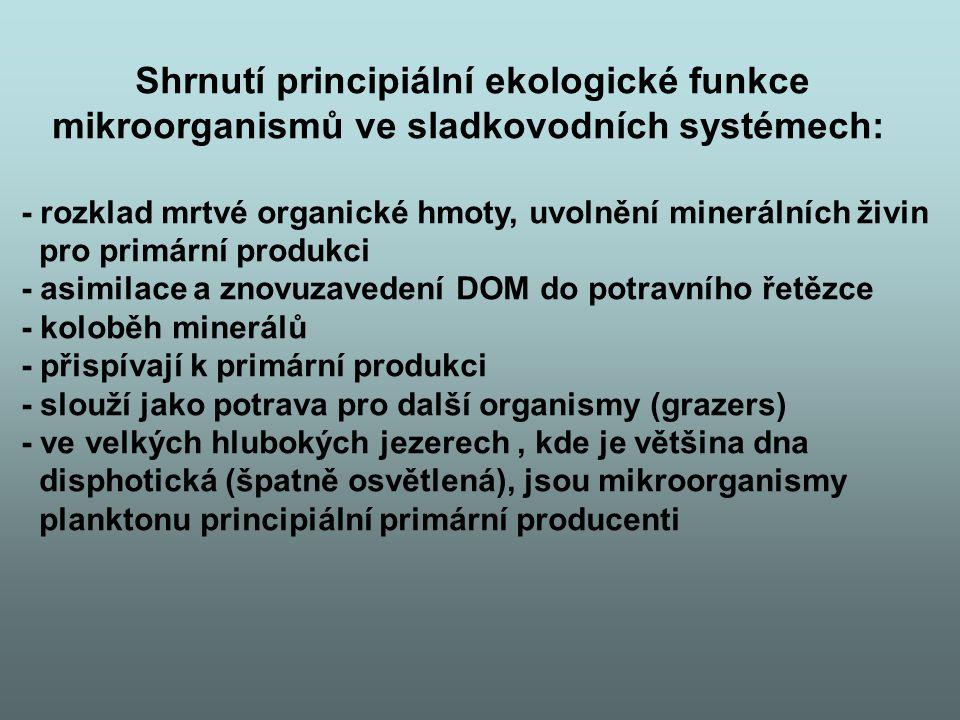 Shrnutí principiální ekologické funkce mikroorganismů ve sladkovodních systémech: - rozklad mrtvé organické hmoty, uvolnění minerálních živin pro primární produkci - asimilace a znovuzavedení DOM do potravního řetězce - koloběh minerálů - přispívají k primární produkci - slouží jako potrava pro další organismy (grazers) - ve velkých hlubokých jezerech, kde je většina dna disphotická (špatně osvětlená), jsou mikroorganismy planktonu principiální primární producenti