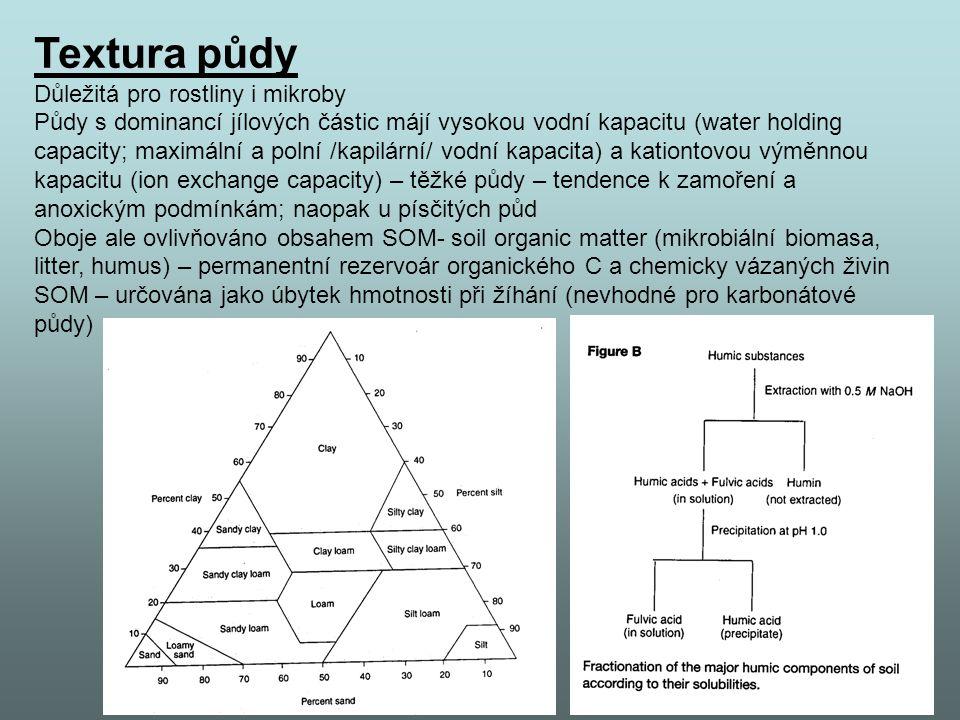 Textura půdy Důležitá pro rostliny i mikroby Půdy s dominancí jílových částic májí vysokou vodní kapacitu (water holding capacity; maximální a polní /kapilární/ vodní kapacita) a kationtovou výměnnou kapacitu (ion exchange capacity) – těžké půdy – tendence k zamoření a anoxickým podmínkám; naopak u písčitých půd Oboje ale ovlivňováno obsahem SOM- soil organic matter (mikrobiální biomasa, litter, humus) – permanentní rezervoár organického C a chemicky vázaných živin SOM – určována jako úbytek hmotnosti při žíhání (nevhodné pro karbonátové půdy)