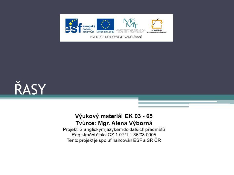 ŘASY Výukový materiál EK 03 - 65 Tvůrce: Mgr. Alena Výborná Projekt: S anglickým jazykem do dalších předmětů Registrační číslo: CZ.1.07/1.1.36/03.0005