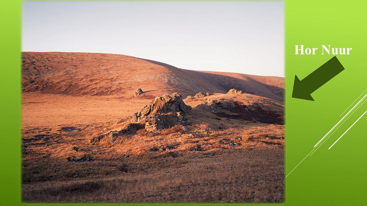 PŘÍRODA  Mírný pás  Nejdelší řeka: Herlén gol (1 264 km)  Nejvyšší bod: Nayramadlin Orgil (4 374 m.n.m.)  Nejnižší bod: Hoh Nuur (518 m.n.m.) Hor