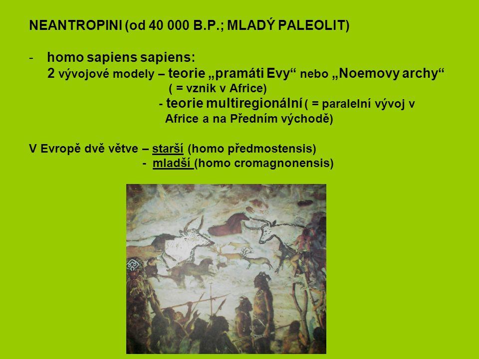 """NEANTROPINI (od 40 000 B.P.; MLADÝ PALEOLIT) -homo sapiens sapiens: 2 vývojové modely – teorie """"pramáti Evy"""" nebo """"Noemovy archy"""" ( = vznik v Africe)"""