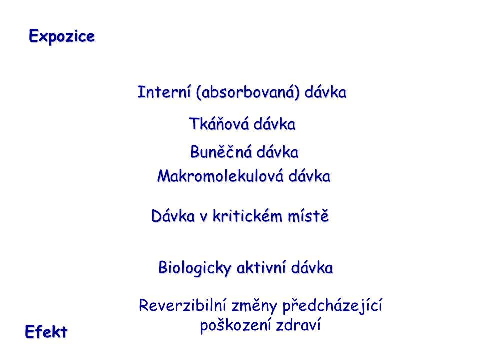 Interní (absorbovaná) dávka Tkáňová dávka Buněčná dávka Makromolekulová dávka Dávka v kritickém místě Biologicky aktivní dávka Expozice Efekt Reverzibilní změny předcházející poškození zdraví