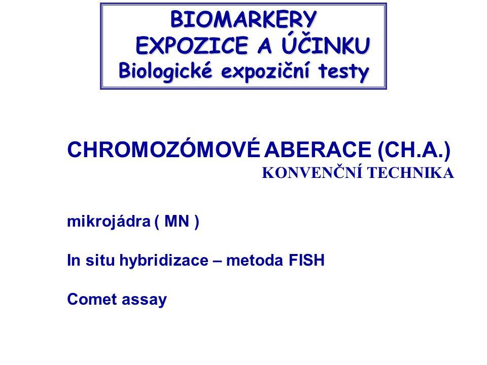 CHROMOZÓMOVÉ ABERACE (CH.A.) KONVENČNÍ TECHNIKA mikrojádra ( MN ) In situ hybridizace – metoda FISH Comet assay BIOMARKERY EXPOZICE A ÚČINKU Biologické expoziční testy EXPOZICE A ÚČINKU Biologické expoziční testy