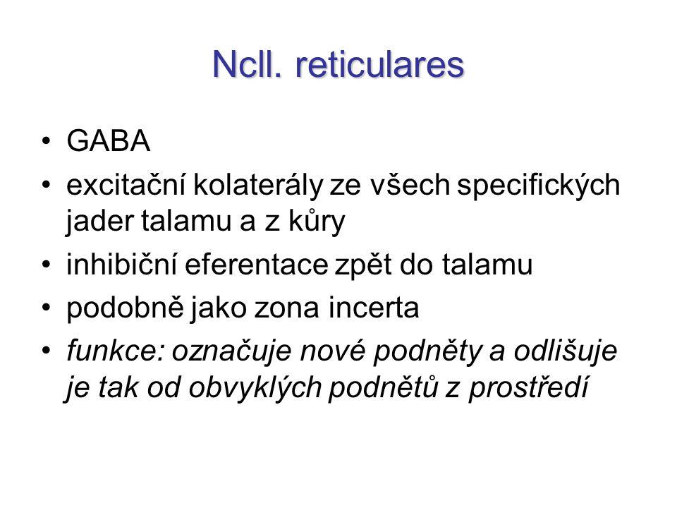 Ncll. reticulares GABA excitační kolaterály ze všech specifických jader talamu a z kůry inhibiční eferentace zpět do talamu podobně jako zona incerta