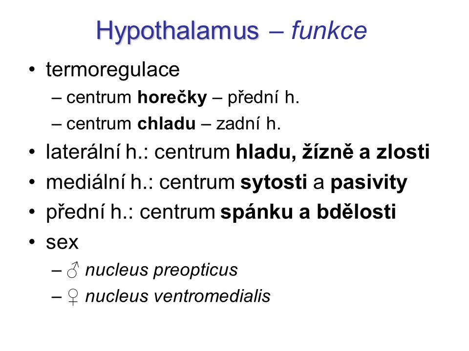 Hypothalamus Hypothalamus – funkce termoregulace –centrum horečky – přední h. –centrum chladu – zadní h. laterální h.: centrum hladu, žízně a zlosti m