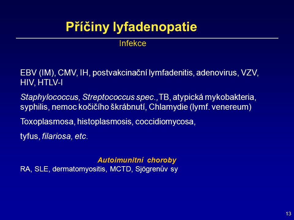 13 Příčiny lyfadenopatie Infekce EBV (IM), CMV, IH, postvakcinační lymfadenitis, adenovirus, VZV, HIV, HTLV-I Staphylococcus, Streptococcus spec.,TB,