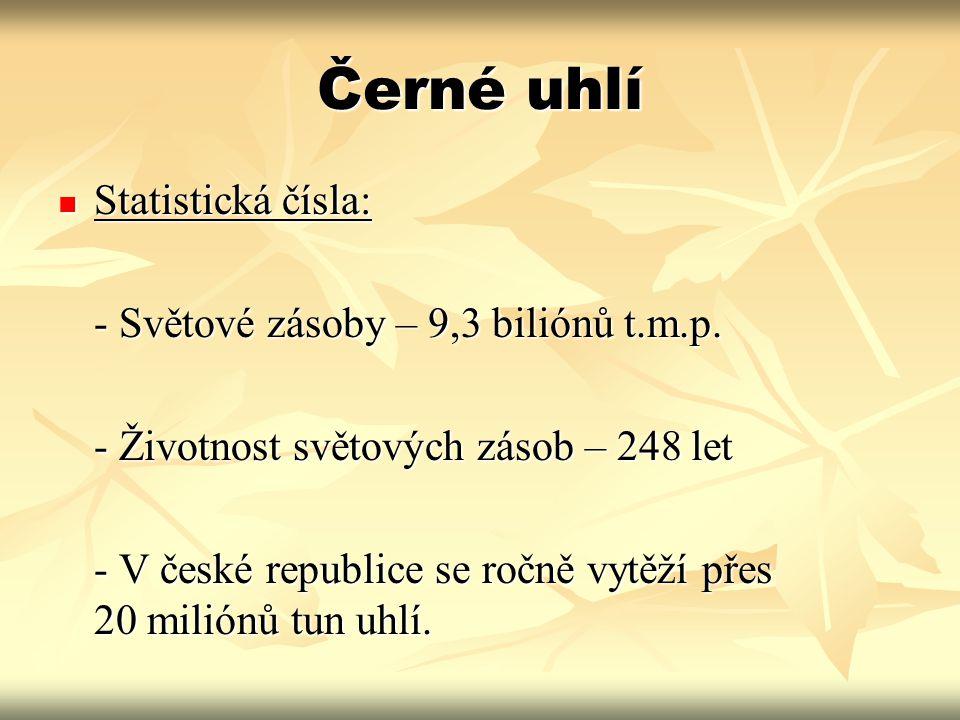 Černé uhlí Statistická čísla: Statistická čísla: - Světové zásoby – 9,3 biliónů t.m.p. - Životnost světových zásob – 248 let - V české republice se ro