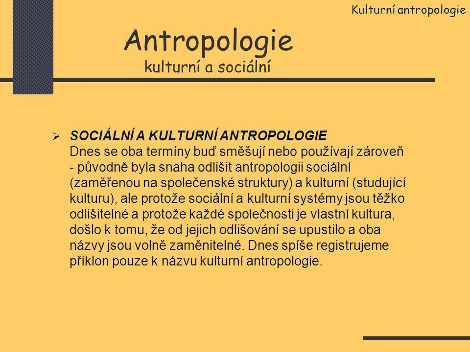 Antropologie kulturní a sociální  SOCIÁLNÍ A KULTURNÍ ANTROPOLOGIE Dnes se oba termíny buď směšují nebo používají zároveň - původně byla snaha odliši