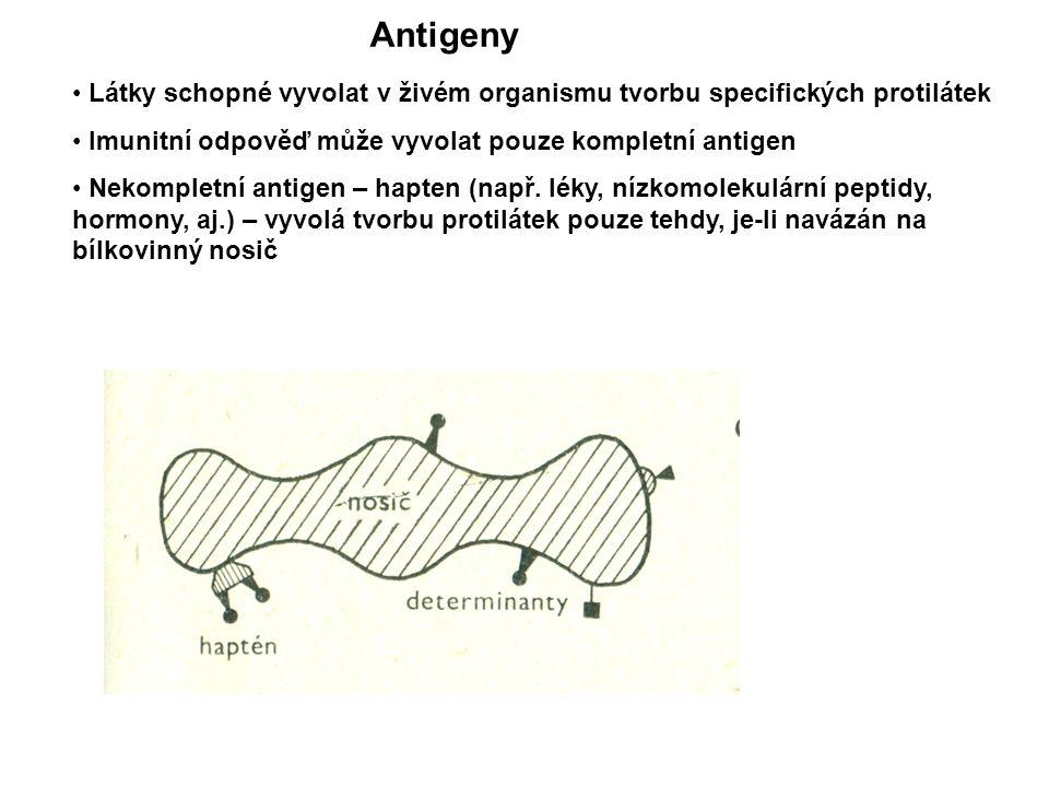 Obr 1: Antigeny – hapten, nosič, determinanty Látky schopné vyvolat v živém organismu tvorbu specifických protilátek Imunitní odpověď může vyvolat pouze kompletní antigen Nekompletní antigen – hapten (např.