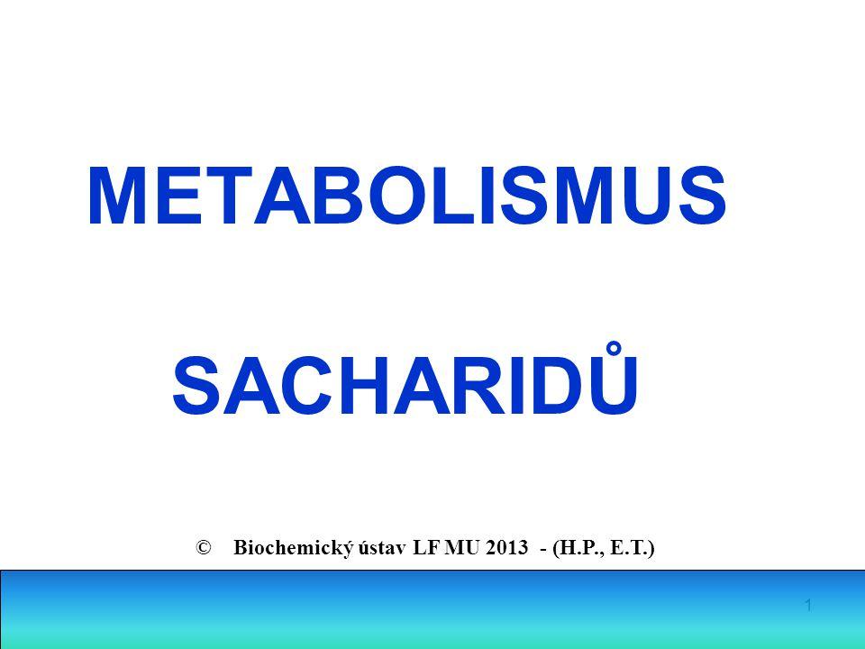 1 METABOLISMUS SACHARIDŮ © Biochemický ústav LF MU 2013 - (H.P., E.T.)