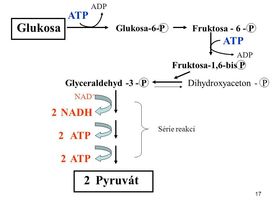17 Glukosa Glukosa-6-P Fruktosa - 6 - P Fruktosa-1,6-bis P ATP ADP ATP ADP Glyceraldehyd -3 - PDihydroxyaceton - P NADH ATP Série reakcí Pyruvát 2 2 2 2 NAD +