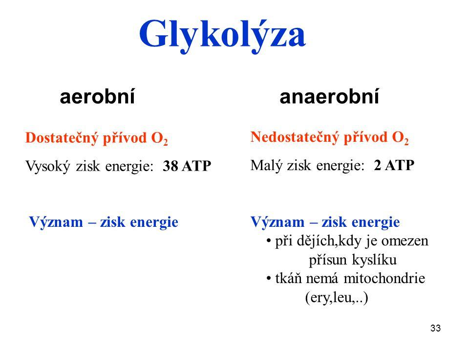 33 aerobní anaerobní Dostatečný přívod O 2 Vysoký zisk energie: 38 ATP Nedostatečný přívod O 2 Malý zisk energie: 2 ATP Význam – zisk energie při dějích,kdy je omezen přísun kyslíku tkáň nemá mitochondrie (ery,leu,..) Význam – zisk energie Glykolýza