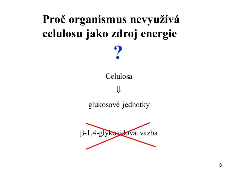 8 Proč organismus nevyužívá celulosu jako zdroj energie ? Celulosa  glukosové jednotky  -1,4-glykosidová vazba