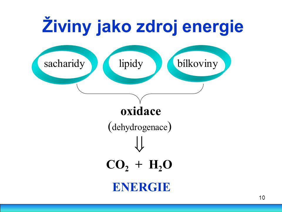 10 Živiny jako zdroj energie sacharidy lipidy bílkoviny oxidace ( dehydrogenace ) CO 2 + H 2 O ENERGIE 