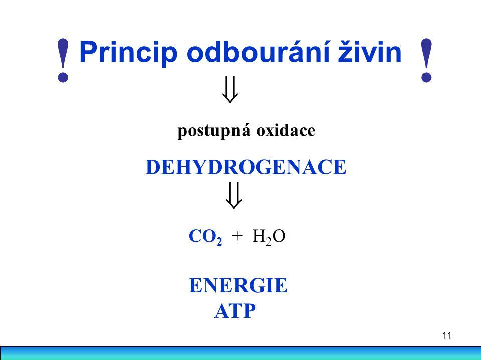 11 Princip odbourání živin  postupná oxidace DEHYDROGENACE  CO 2 + H 2 O ENERGIE ATP !!
