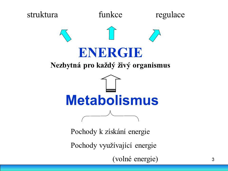 3 Metabolismus ENERGIE Nezbytná pro každý živý organismus struktura funkce regulace Pochody k získání energie Pochody využívající energie (volné energ