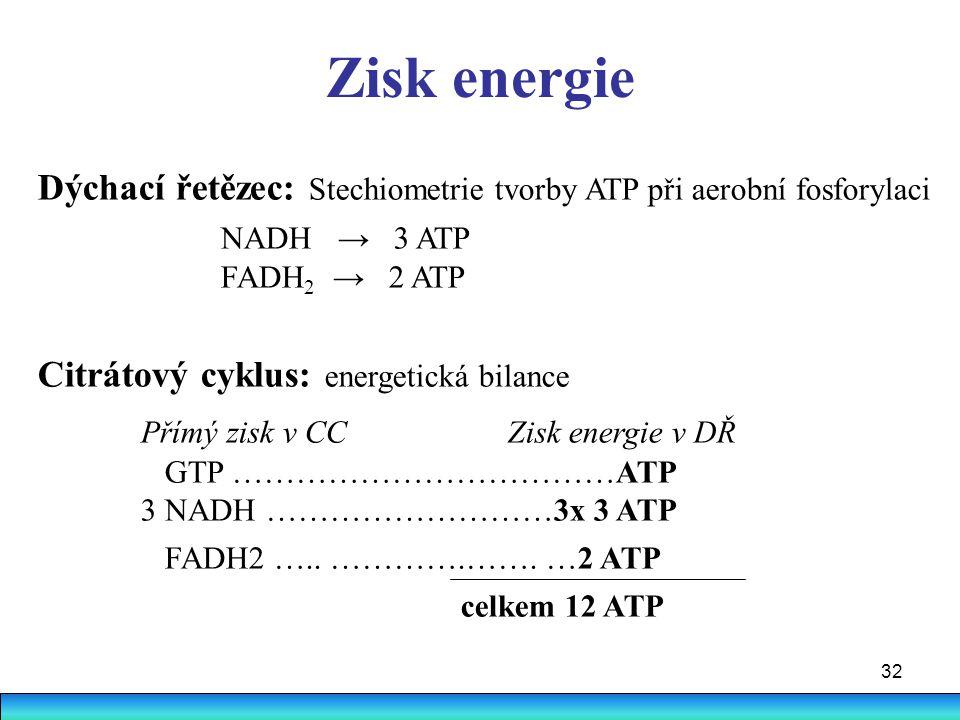 32 Zisk energie Dýchací řetězec: Stechiometrie tvorby ATP při aerobní fosforylaci NADH → 3 ATP FADH 2 → 2 ATP Citrátový cyklus: energetická bilance Př